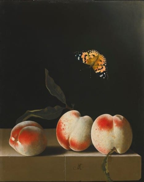 37 THE PROPERTY OF A GENTLEMAN ADRIAEN COORTE THREE PEACHES ON A STONE LEDGE, WITH A RED ADMIRAL BUTTERFLY Estimate  2,000,000 — 3,000,000  GBP