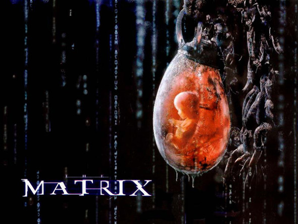 Matrix-PodGrown
