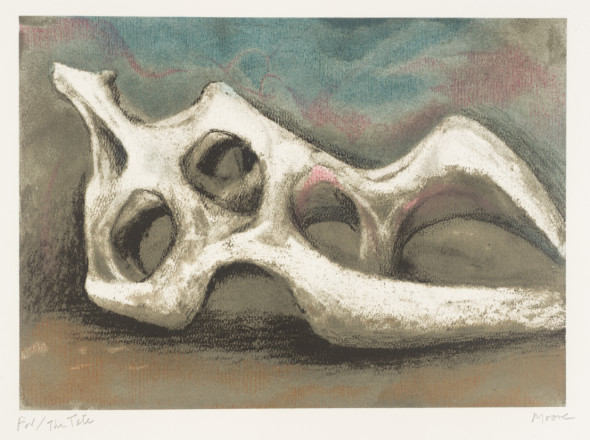 henry moore roma