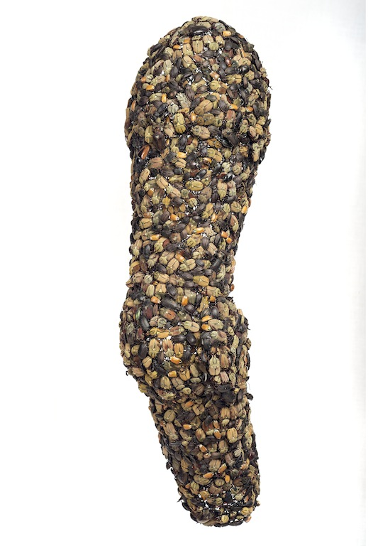 Pantser Arm, Jan Fabre