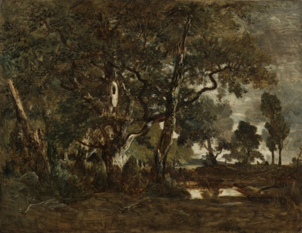 Forest of Fontainebleau, Cluster of Tall Trees Overlooking the Plain of Clair-Bois at the Edge of Bas-Bréau, c. 1849-52 Fontainebleauskoven, engruppehøjetræerved Clair-Bois-sletteniudkantenaf Bas-Bréau, ca. 1849-52 Oil on canvas / Oliepålærred 90.8 × 116.8 cm  The J. Paul Getty Museum, Los Angeles, 2007.13