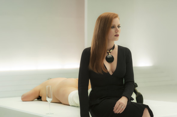 "Amy Adams in ""Nocturnal Animals"", 2016"