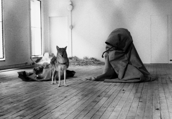 Joseph Beuys, I like America and America likes me, 1974