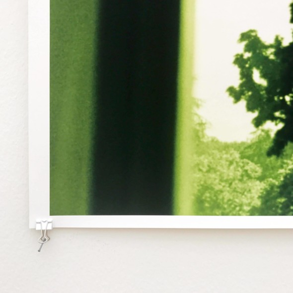 Tillmans, Dettaglio, WF, window shaped tree (2002)
