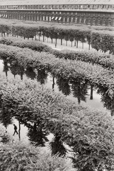 36 Henri Cartier-Bresson, Gardens of the Palais Royal, Paris, 1959 $12,000 - 18,000 $33,750 £25,262/€28,704 World Record for This Image at Auction