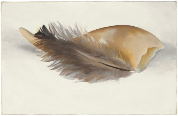 Georgia O'Keeffe (1887-1986), Horn and Feather, painted in 1937. Oil on canvas. 9 x 14 in (22.9 x 35.6 cm).