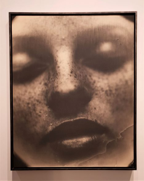 SALLY MANN, VIRGINIA #42, 2004 - EDWYNN HOUK