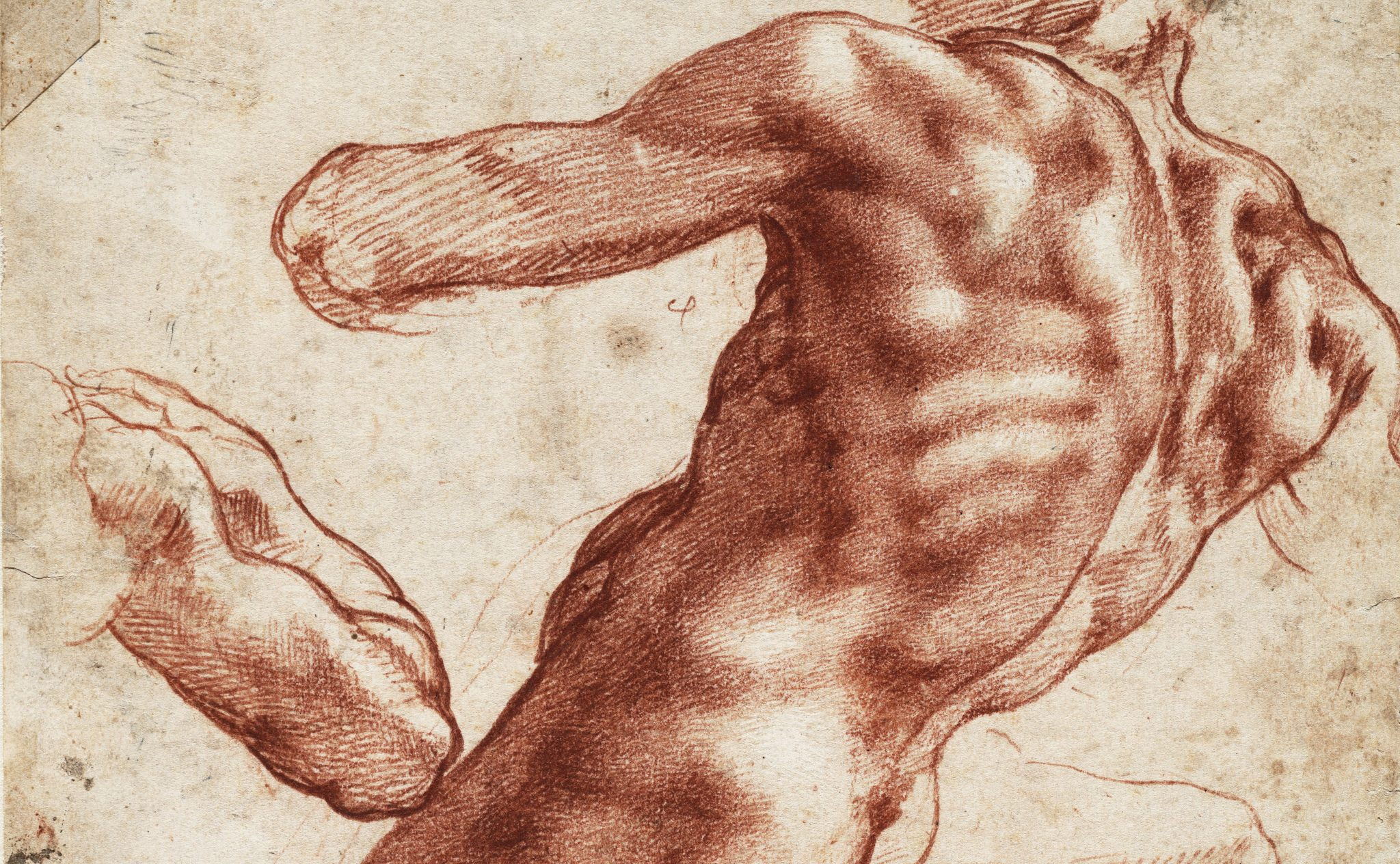 Michelangelo: Mind of the Master, Cleveland Museum of Art