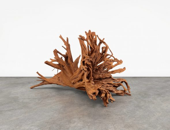 Ai Weiwei Roots Lisson gallery 2019